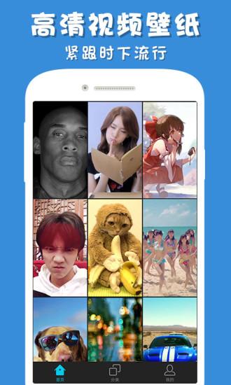 彩蛋视频壁纸app客户端下载